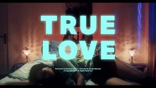 True Love - Elephant Kind