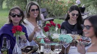 Vinhos do Brasil - Campanha Gaúcha