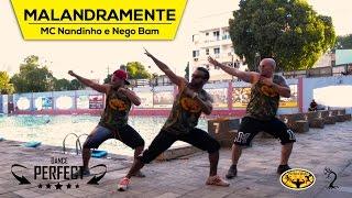 Malandramente - MC Nandinho e Nego Bam - Dance Perfect