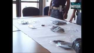 Senigallia, arrestato dalla Polizia, giovane 20enne con 135gr marijuana e 35gr hashish