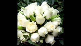 Flores e Fotos // Ana Carolina-Problemas