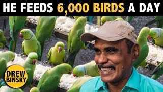 He Feeds 6,000 Birds Every Day