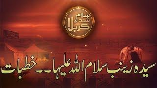 Shuhda-e-Karbala | Syeda Zainab Salam Ullah Aliha (Khutbat) | 22 Sep 2018 | 92NewsHD