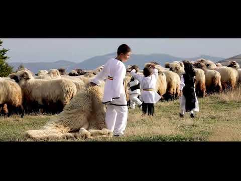 Viata de cioban - Melodii de ciobanie