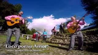 LOCO POR SU AMOR TRIO SIN FRONTERAS 2016 video oficial