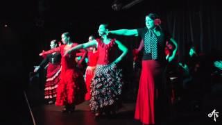 Bulerías - Alma Flamenca presents Flamenco Andalucía - Adelaide 2014