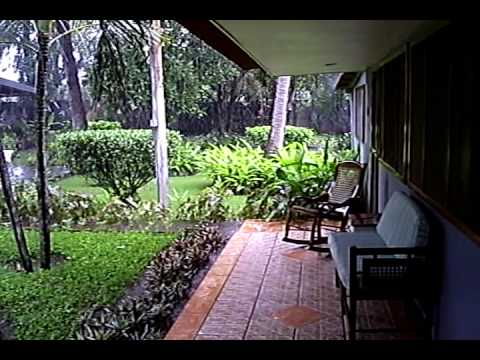 RAIN AT MY PLACE IN NICARAGUA