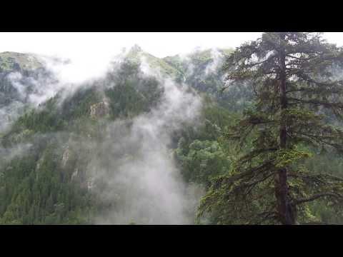 Sümela'dan Sis ve Yeşil Manzarası