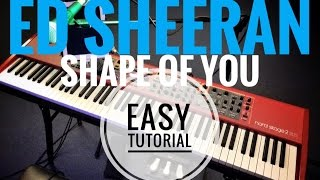 ED SHEERAN - Shape Of You // Easy Piano Tutorial With Chords // NORD Stage 2 EX88 // Tobias Rößler