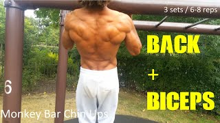 Back and Biceps - The Abnormal Calisthenics Workout