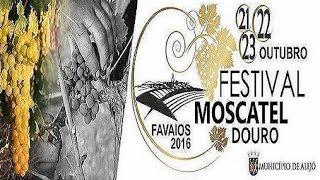 2016 | FESTIVAL MOSCATEL DO DOURO (FAVAIOS)