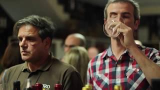 Adega de Borba // Prova de Vinhos