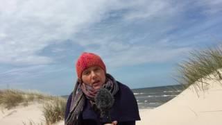 Moc Obecności - wczasy ze świadomą pracą z ciałem i umysłem nad polskim morzem