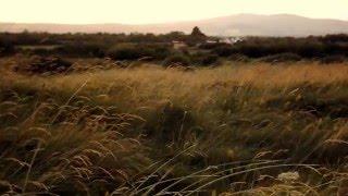 Braveheart OST Bannockburn