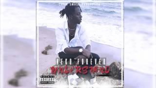 Understand | Neko Forever
