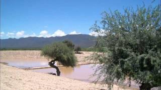 Las Jilguerillas- Ojitos Negros Encantadores