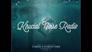 James Blake - I Need A Forest Fire ft. Bon Iver (COFRESI Remix)