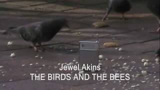 JEWEL AKINS:  THE BIRDS AND THE BEES (1965)