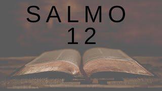 SALMO 12, VERSÍCULO 06 - PROMESSAS DE DEUS.