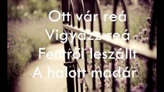 Leander Kills - Madár /Dalszöveg/