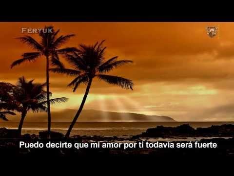 Boys Of Summer En Espanol de The Ataris Letra y Video