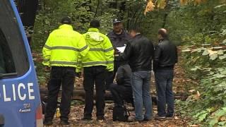 Паднало дърво в Борисовата градина уби човек