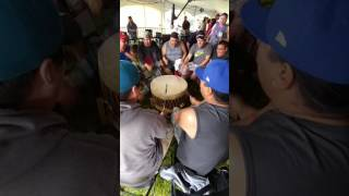 Black Bear #2 - Ottawa Summer Solstice Pow Wow 2017