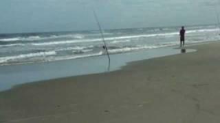 pescador- armandinho