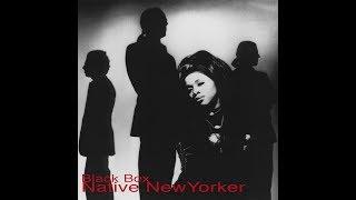 Black Box - Native new yorker