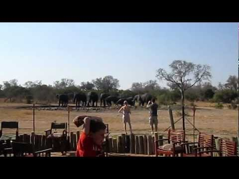 Elephants at Tintswalo Watering Hole