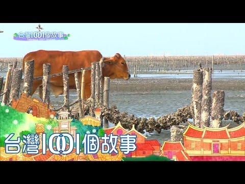 海牛採蚵 芳苑旅遊新亮點- YouTube