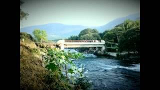 Tropical manila-Rio del Zetal