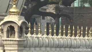 Hazrat nizamuddin auliya dargah delhi ( ek jhalak )