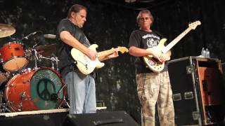 Walter Trout - The  Sky is Falling Down - Live on Don Odells Legends