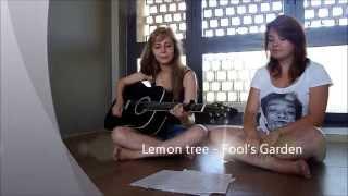[Acoustic Cover] Lemon Tree - Fool's Garden