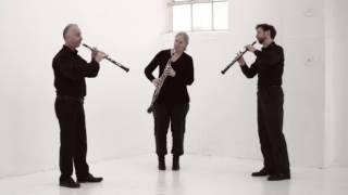 Beethoven op 87 Menuetto & Trio played by the Lonarc Oboe Trio