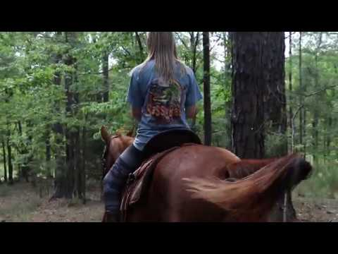 Auburn student and horseback rider Savannah Valentine explains why she brought her horse from home to college.  Filmed by Jennifer Farner