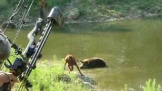 Jim and Lisa - Lisa Boar Hog at Dixie Sportsman Hunting Preserve