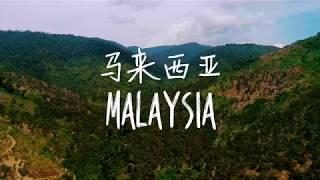金種子 - 馬來西亞貓山王 - 中國南寧榴蓮節宣傳片 - BEHO Fresh (碧和果業)