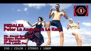 Peter la Anguila & La Kuki - Pedalea 2014