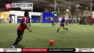Las Tarantulas vs. Coalcoman COED Liga Latinoamericana
