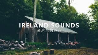 Sean Paul - No Lie ft. Dua Lipa (Welshy Remix)