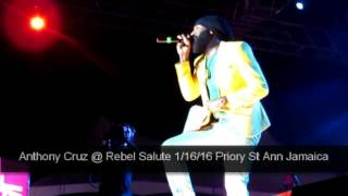 Anthony Cruz sings Don't Wanna Miss a Thing @RebelSalute 1/16/16 in Jamaica