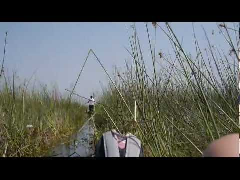 Mokoro Canoeing at the Okavango Delta (Part 4) – 2 Idiots Abroad