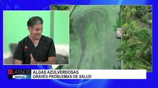 Alga tóxica: informe espacial