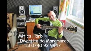 Mitica Harb  - Invartita de Maramures.VOB