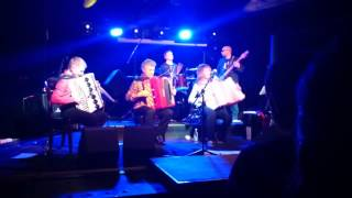 Accordion rock - Boogie Wonderland (Earth, Wind and Fire cover, 15.04.2016, BACKSTAGE CLUB)