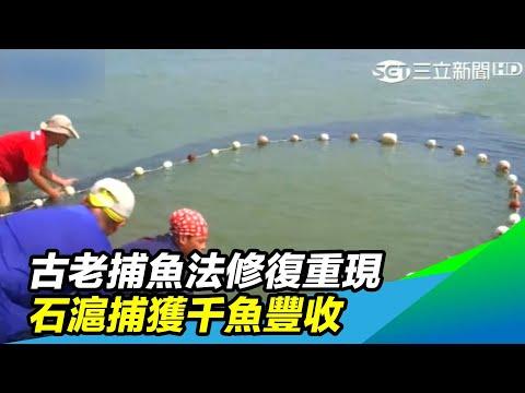 古老捕魚法修復重現 石滬捕獲千魚豐收