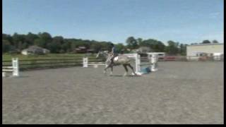 Horse Care & Riding : How to Canter Your Horse