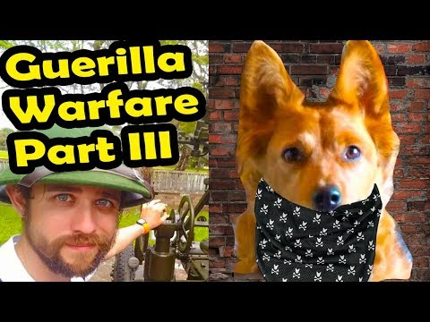 Guerilla Warfare - Discussion with Radical Reviewer